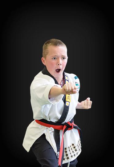 Young Adult Martial Arts